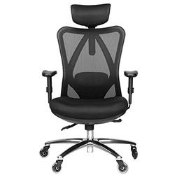 Duramont Ergonomic Adjustable Office Chair with Lumbar Suppo